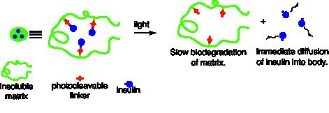 Glucose-Responsive Insulin2