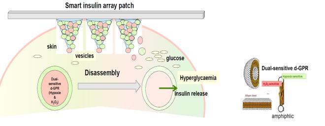 smart_insulin2.png