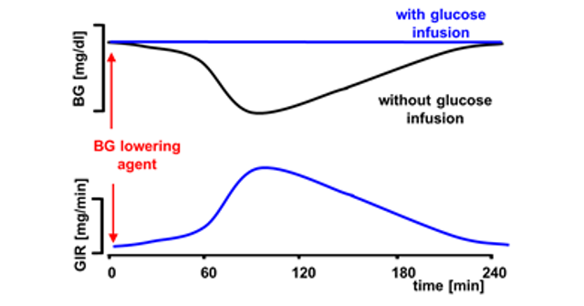Influence of Technical Downtime on the Outcome of Automated Glucose clamps